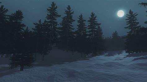 nighttime scene  snow covered spruce forest  full