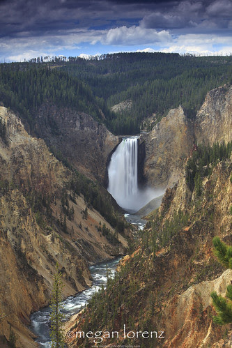 Grand Canyon Of Yellowstone by Megan Lorenz