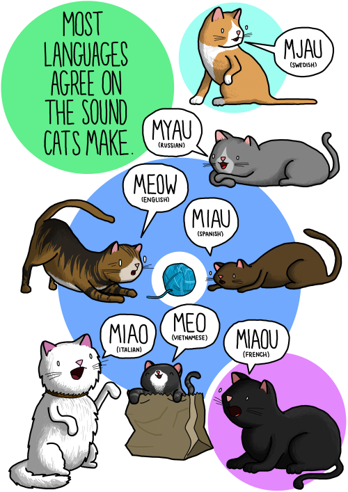 CAT SOUNDSIt's a little daunting drawing cats for the internet, but I had a lot of requests so I couldn't refuse. Let me know what you think! Follow for more animal sounds! (So far:dogs, birds, frogs, lions and cockerels. Check them out!) Also check out my SHOP. Sweet posters, y'all!