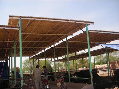 Dairy Farm Shed Construction Cost In Pakistan Shed Plans