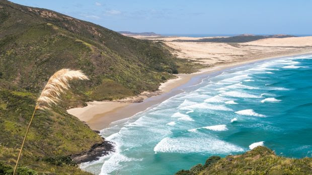 5 Fantastic Things to Do When Working in New Zealand
