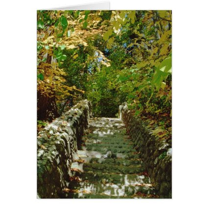 The Green Stairway Greeting Cards