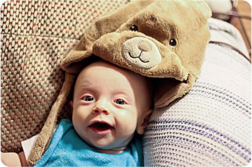 TB Teddy Halloween web.jpg