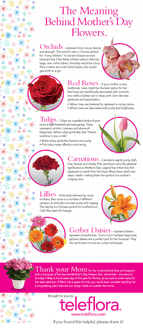 Infographic The Meaning Of Mothers Day Flowers Teleflora Blog