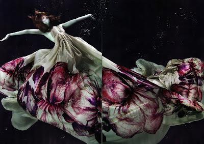 Underwater Photography (21) 13