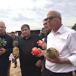 תכנית חדשה: בקעת הירדן תקלוט 10000 תושבים בעשור הקרוב - פורטל החקלאות הישראלי