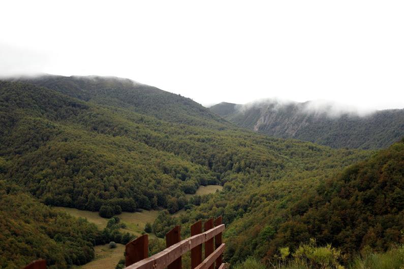 Picos-de-Europa---sudadera-Cállate-la-boca---heelsandroses-(1)
