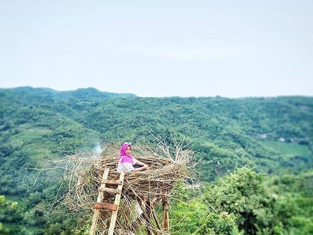 Lokasi Bukit Mojo Gumelem dengan Sarang Burung