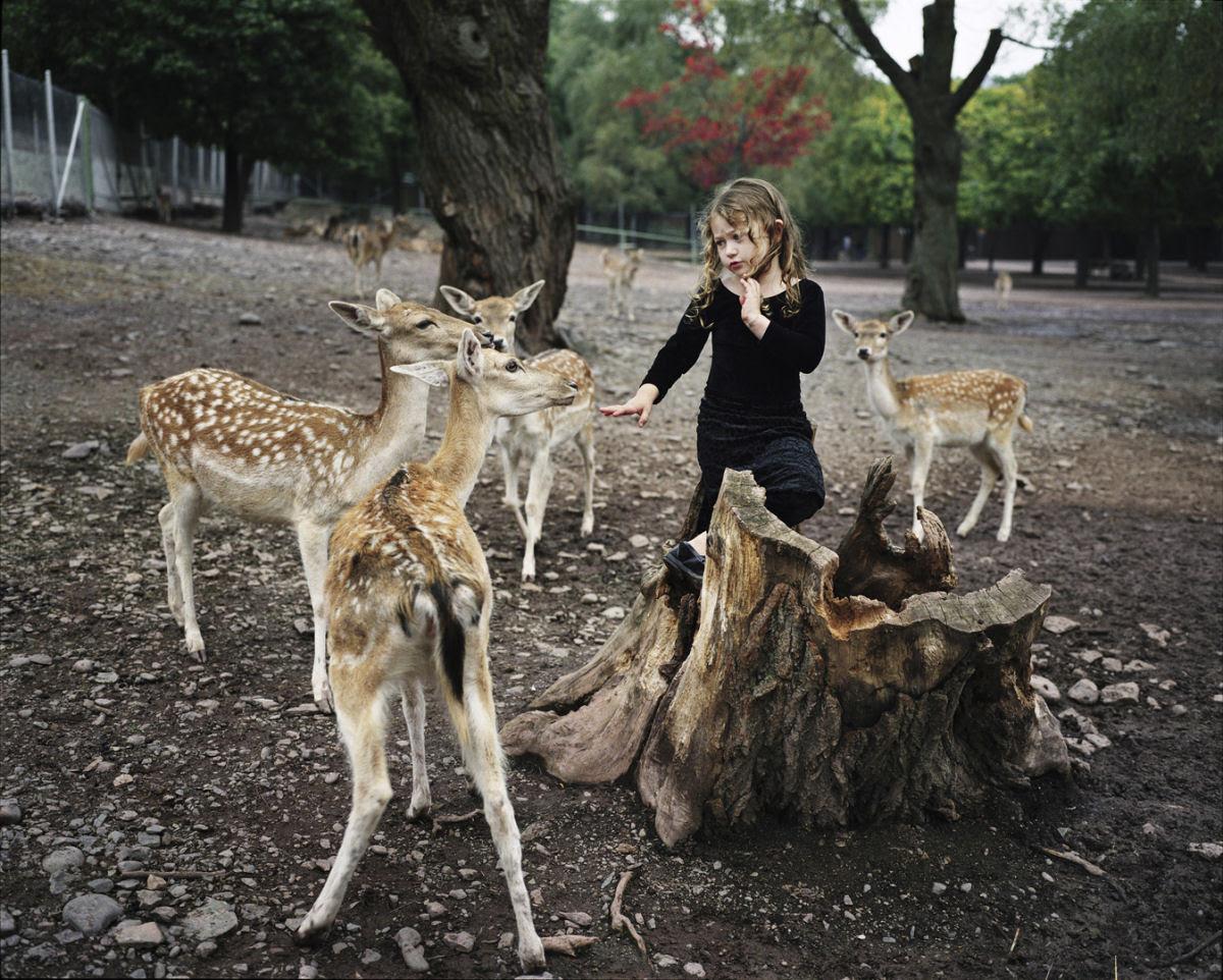 O Mundo de Amelia - A menina que cresceu com os animais e os considera seus irmãos 14