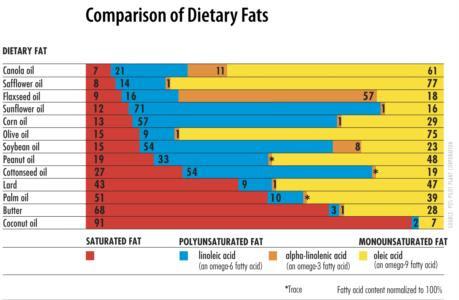 body fat percentage formula pdf