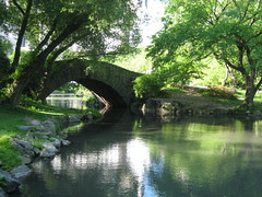 bridge on the pond