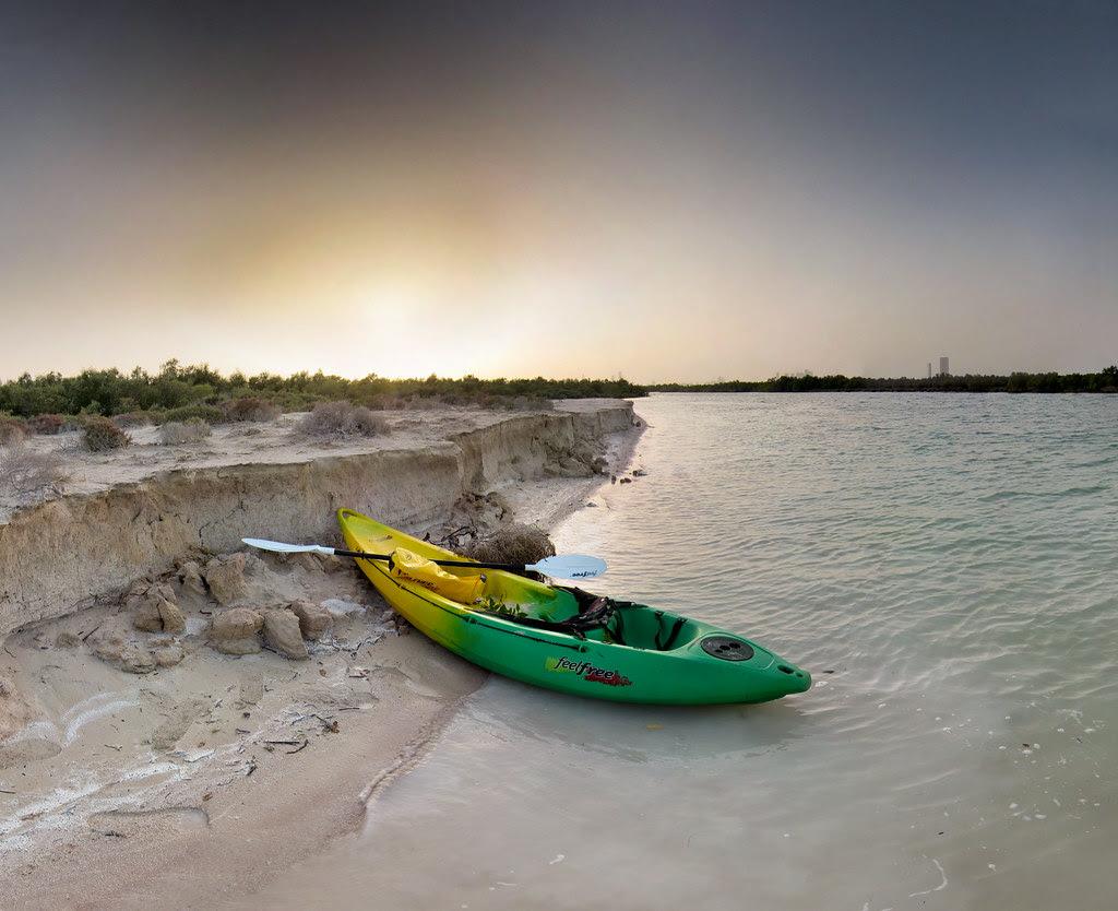 Abu Dhabi - Mangrove - 02-04-2010 - 18h09