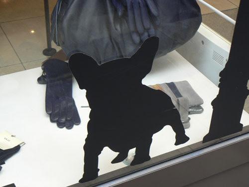 chien noir.jpg