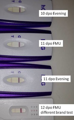 12 Dpo Symptoms Gone