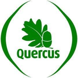 logo quercus normal 269