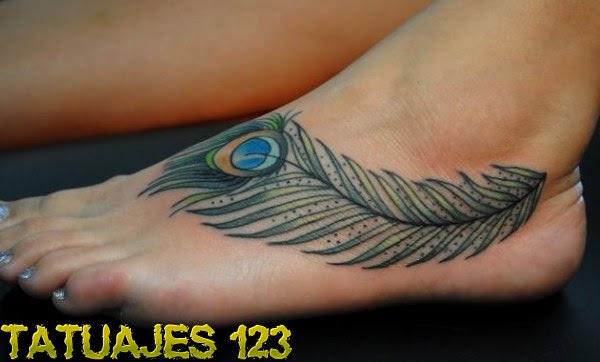Pluma Pavo Real Tatuajes 123