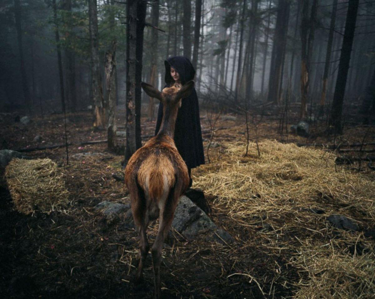 O Mundo de Amelia - A menina que cresceu com os animais e os considera seus irmãos 09