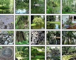 20 best images about Details, The Bloedel Reserve on