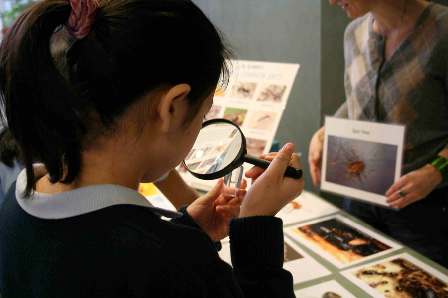 About – Students Discover