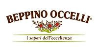 Logo Beppino Occelli200