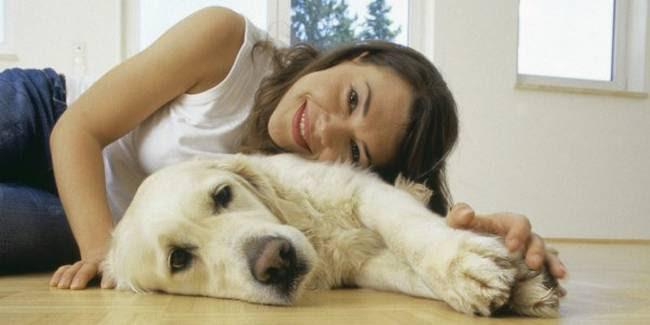 razões-para-mimar-o-seu-cachorro-4