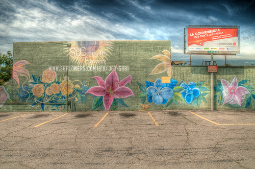 HDR - flowers and a parking lot