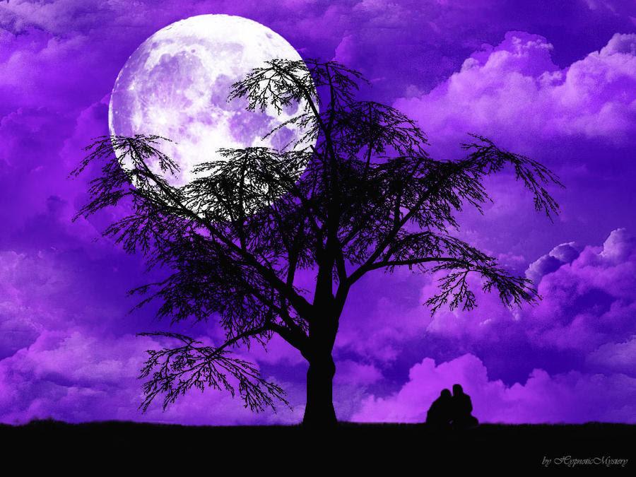 http://img04.deviantart.net/704e/i/2010/289/1/6/violet_night_wallpaper_by_hypnoticmystery-d30wbjg.jpg