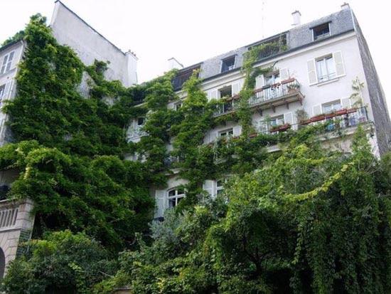 Εντυπωσιακοί κάθετοι κήποι (1)