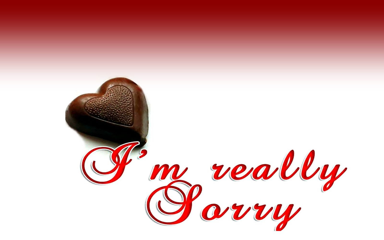 I Am Really Sorry Quotes Hd Wallpaper 04927 Wallpaperspickcom