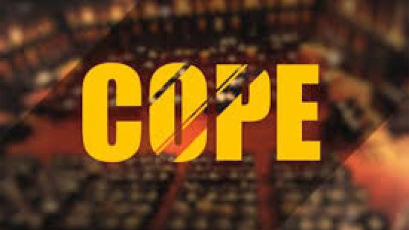 COPE summons Power Ministry, CEB, PUCSL over private purchase agreements