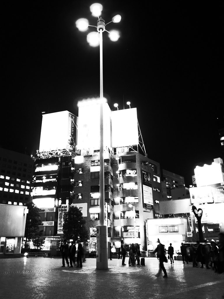 High Contrast Night