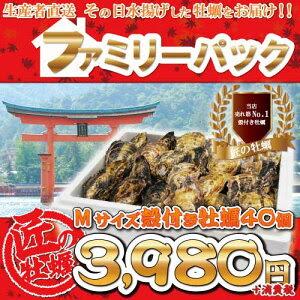 【送料無料!】大人気の広島宮島産牡蠣!ご自宅用におすすめです。【送料無料】ファミリーパッ...