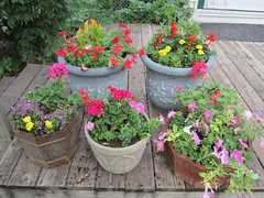 Planters for Mom