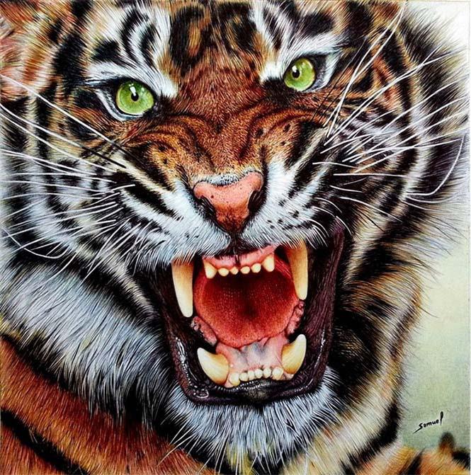 Εκπληκτικές ρεαλιστικές ζωγραφιές με στυλό (1)