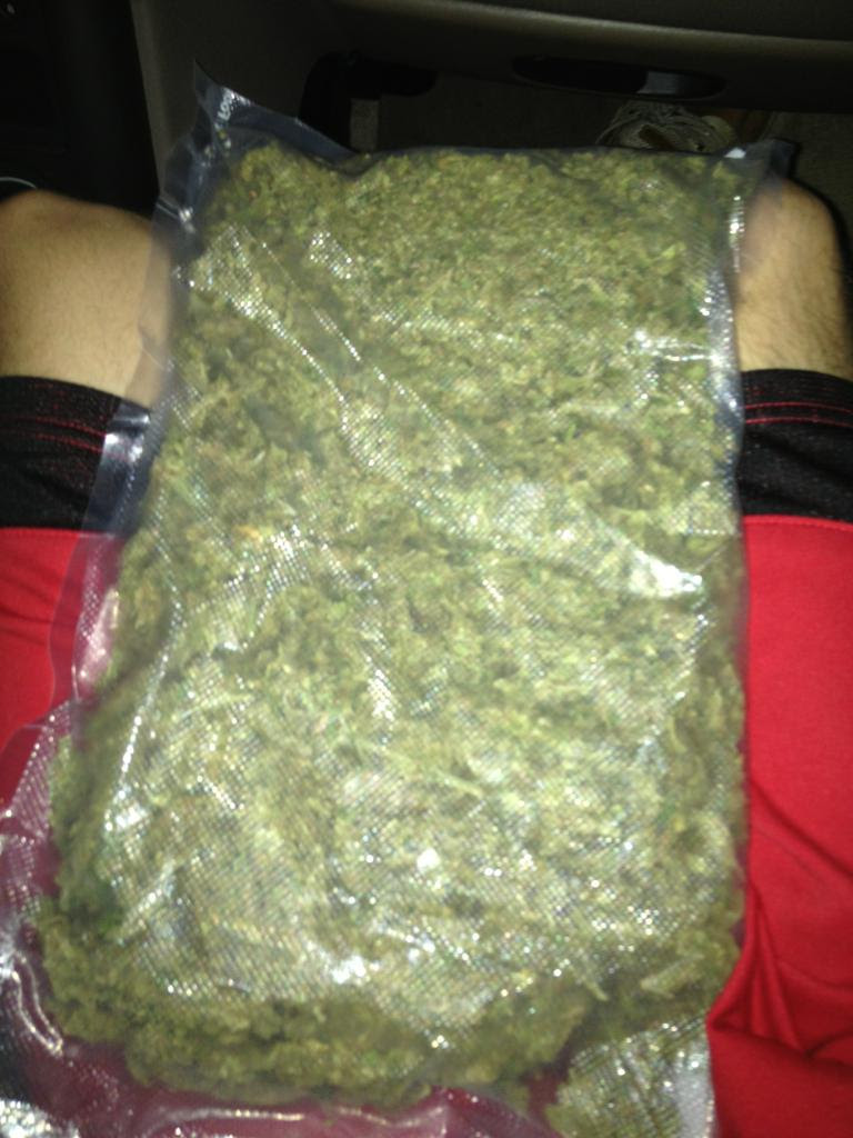We Should Buy A Pound Trees