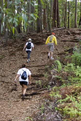 up the manana trail