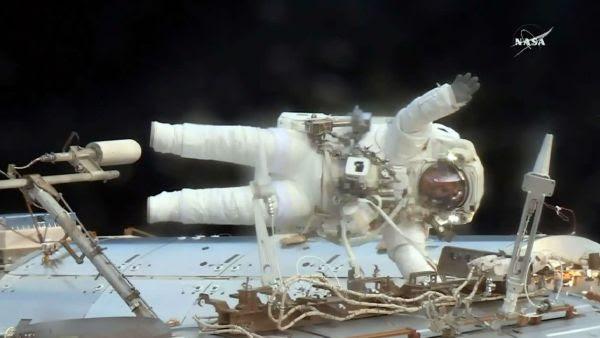 Solibacillus kalamii, cette bactérie inconnue sur Terre découverte dans l'ISS