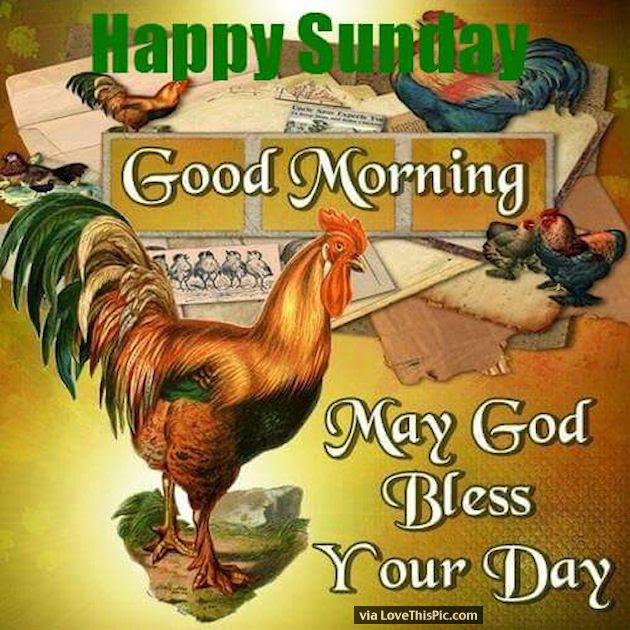 Good Morning Happy Sunday May God Bless Your Day Pictures Photos