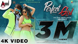 Perfect Girl Lyrics - Abhi Multi ~ LYRICGROOVE