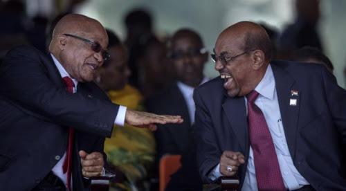 Zuma bashir