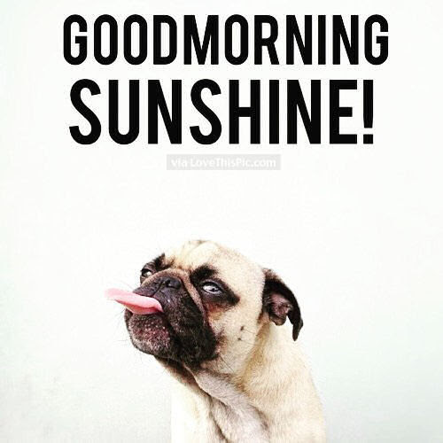 Good Morning Sunshine Pictures Photos And Images For Facebook