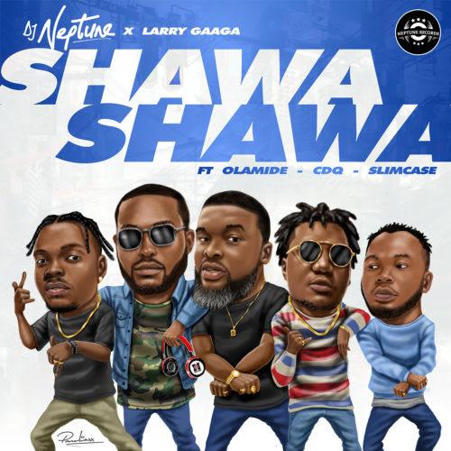 DJ Neptune - Shawa Shawa