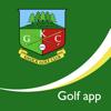Whole in 1 Golf Ltd - Knock Golf Club - Buggy artwork