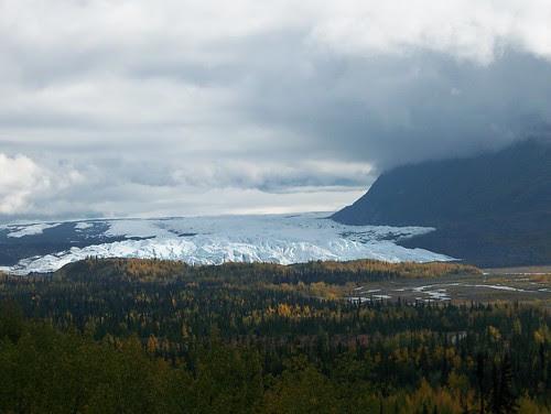 100_0661-Matanuska Glacier & Yellow Aspen