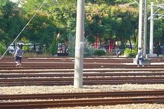 圖中的人不是鐵路迷,只是個攝影狂