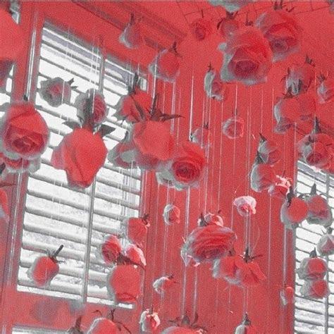 red aesthetic soft feed redaesthetic flower