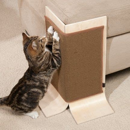 Best Furniture To Have With Cats