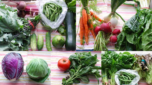 CSA Week 3: Veggies