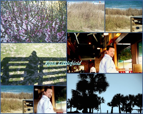ryans collage