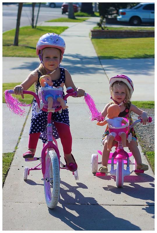 New Bikes 2013 4